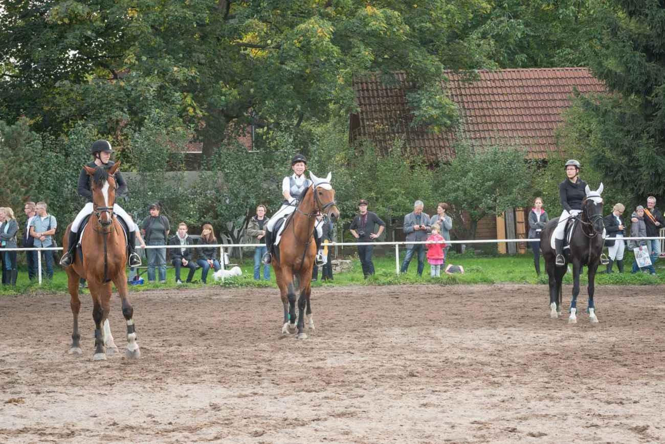 Herodot-Reitertag-Hoffest-19